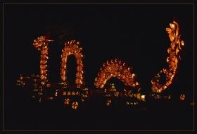 超有创意的南瓜灯节-拍摄于睡美人谷