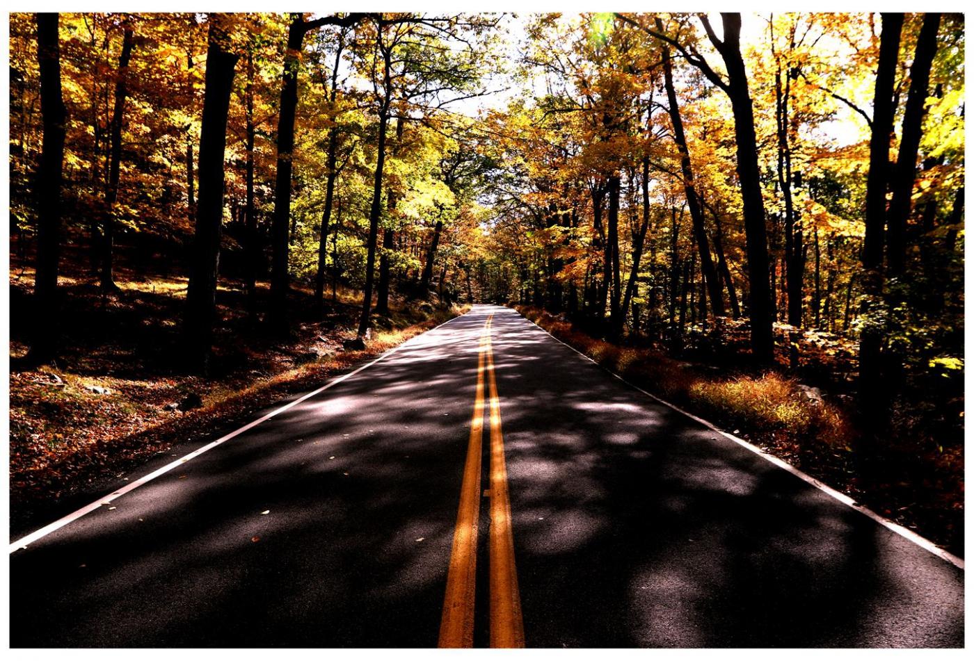 风光] 叶到红时勘比花—实拍美国东部深秋红叶_图1-6