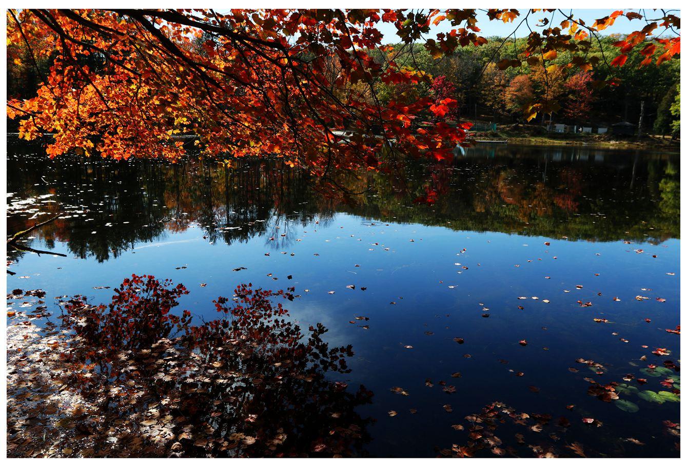 风光] 叶到红时勘比花—实拍美国东部深秋红叶_图1-16