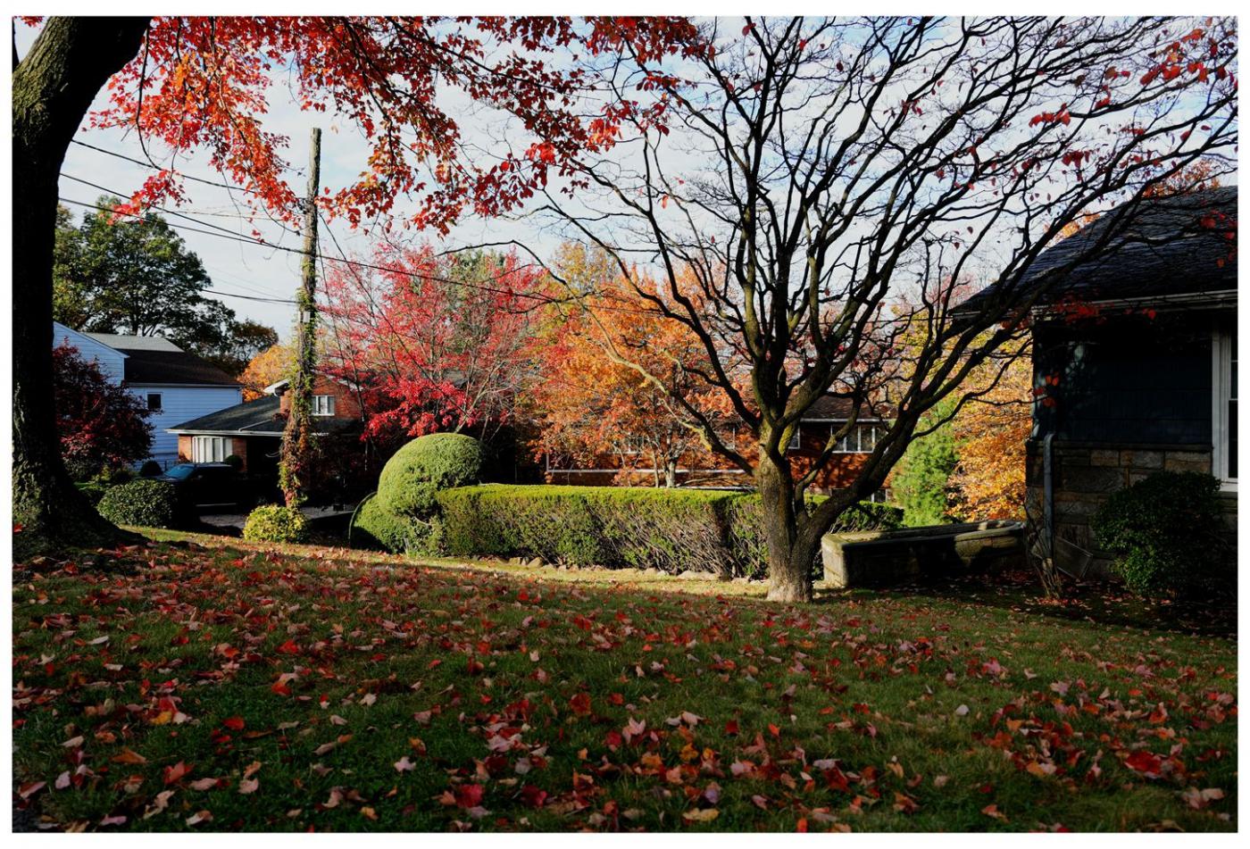 风光] 叶到红时勘比花—实拍美国东部深秋红叶_图1-18