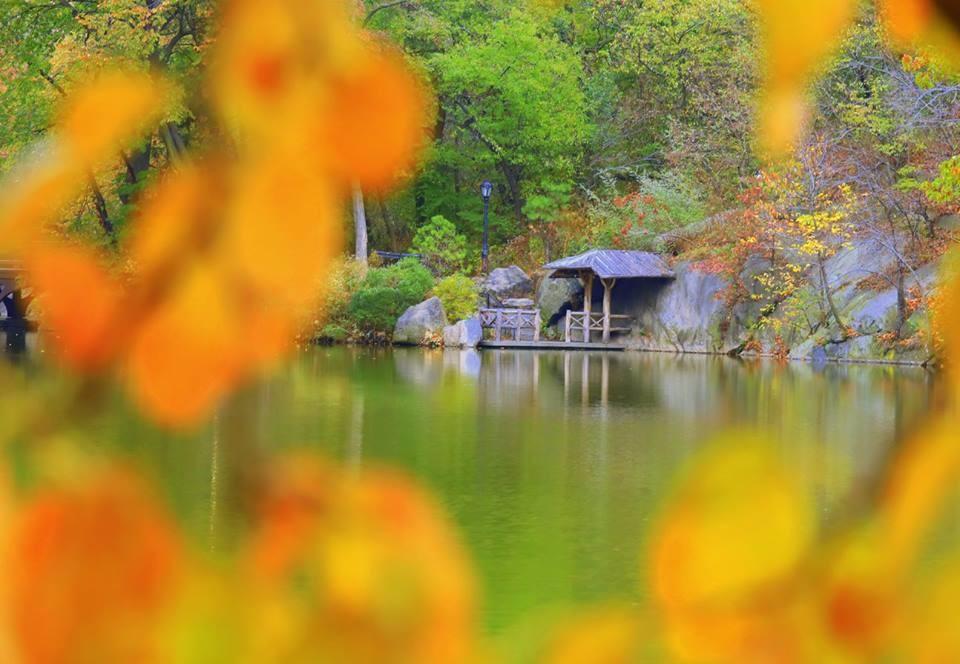 [ 原创摄影】中央公园之秋_图1-5