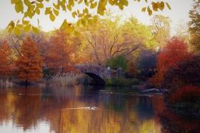 [ 原创摄影】中央公园之秋