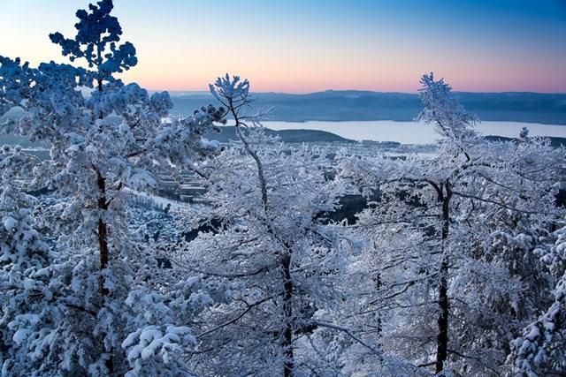 冬雪_图1-2