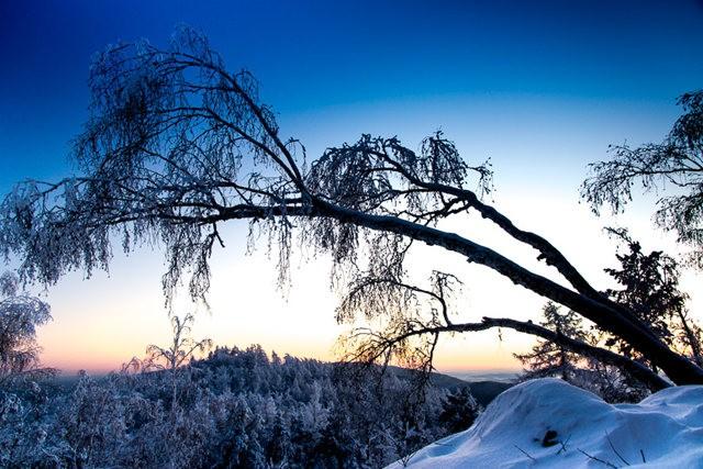 冬雪_图1-4