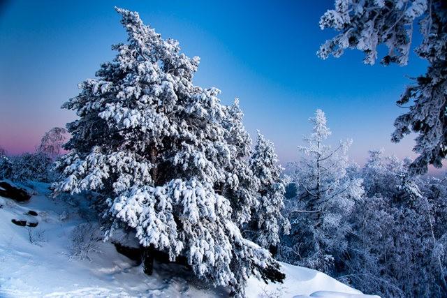 冬雪_图1-5