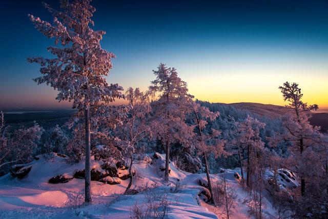 冬雪_图1-10