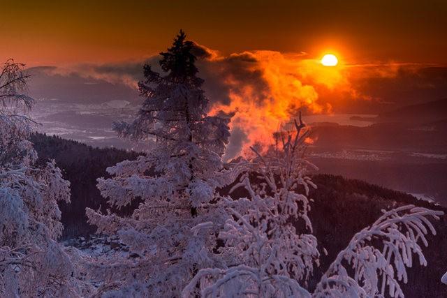 冬雪_图1-15