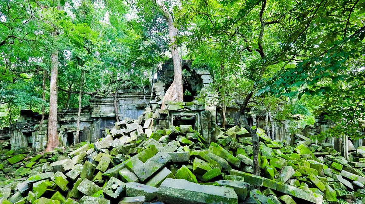 【杆说杆摄】崩密列 失落在原始丛林中的绿色王国 这里是摄影人的天堂 ..._图1-3