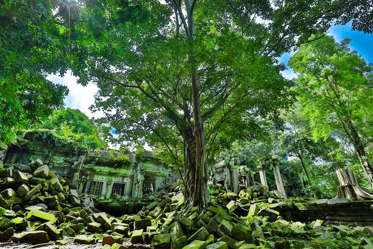 【杆说杆摄】崩密列 失落在原始丛林中的绿色王国 这里是摄影人的天堂 ..._图1-10