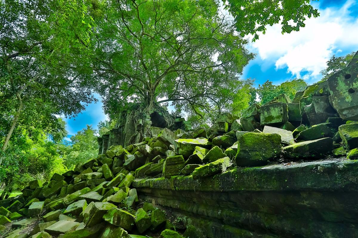 【杆说杆摄】崩密列 失落在原始丛林中的绿色王国 这里是摄影人的天堂 ..._图1-11