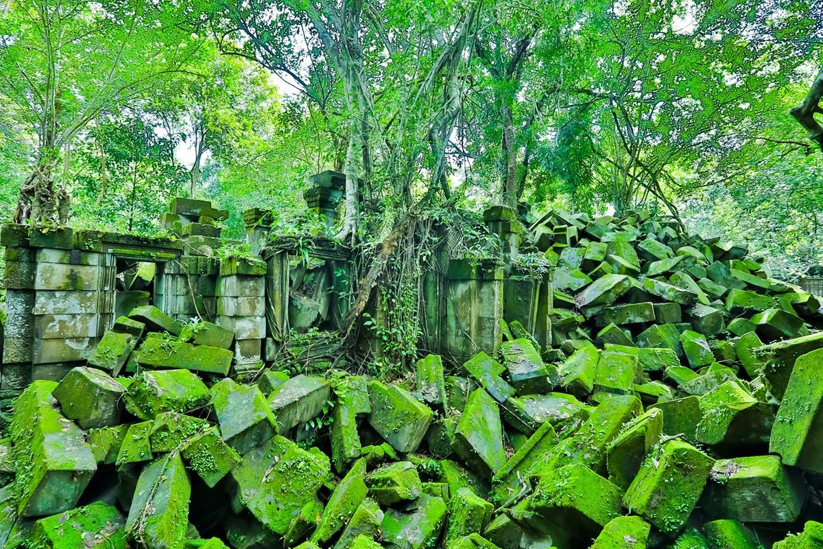 【杆说杆摄】崩密列 失落在原始丛林中的绿色王国 这里是摄影人的天堂 ..._图1-19