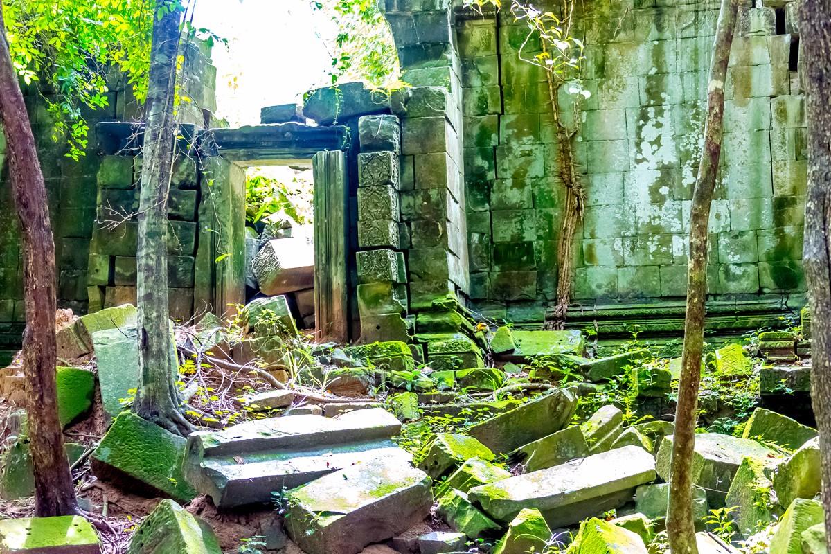 【杆说杆摄】崩密列 失落在原始丛林中的绿色王国 这里是摄影人的天堂 ..._图1-21