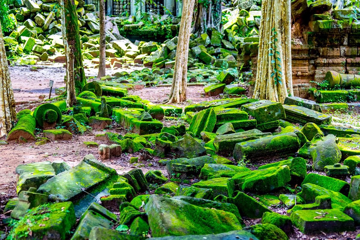 【杆说杆摄】崩密列 失落在原始丛林中的绿色王国 这里是摄影人的天堂 ..._图1-25