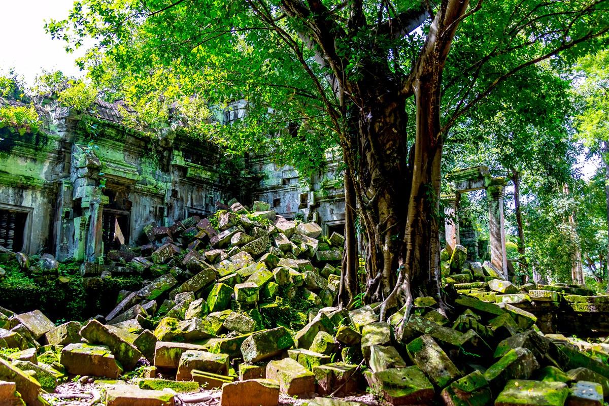 【杆说杆摄】崩密列 失落在原始丛林中的绿色王国 这里是摄影人的天堂 ..._图1-26