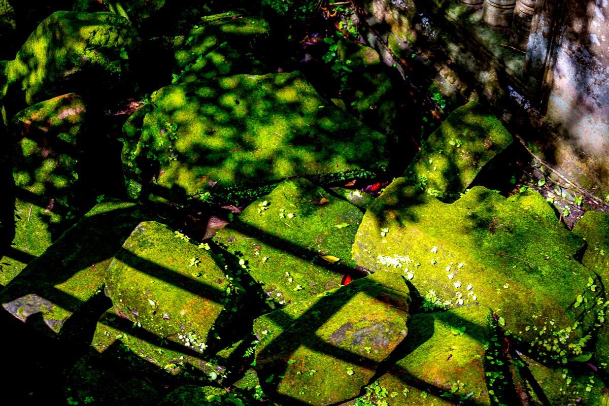 【杆说杆摄】崩密列 失落在原始丛林中的绿色王国 这里是摄影人的天堂 ..._图1-31