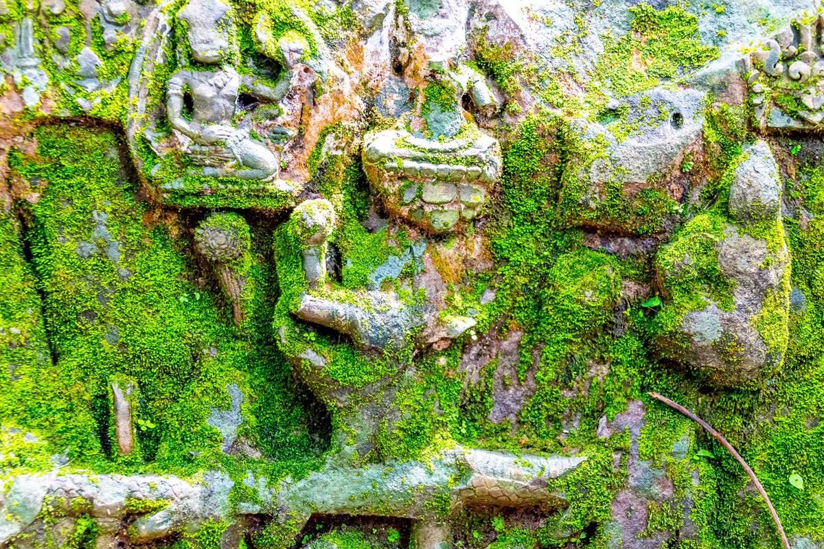 【杆说杆摄】崩密列 失落在原始丛林中的绿色王国 这里是摄影人的天堂 ..._图1-38