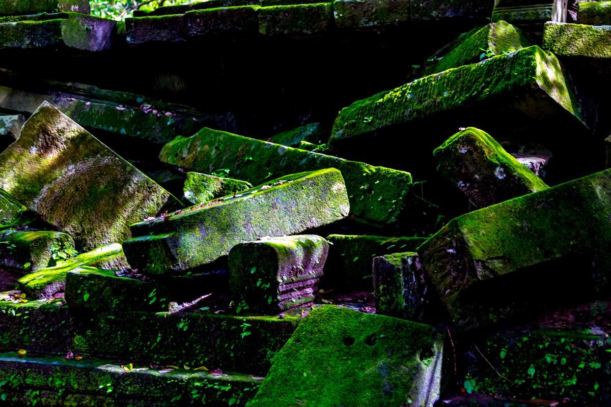 【杆说杆摄】崩密列 失落在原始丛林中的绿色王国 这里是摄影人的天堂 ..._图1-36