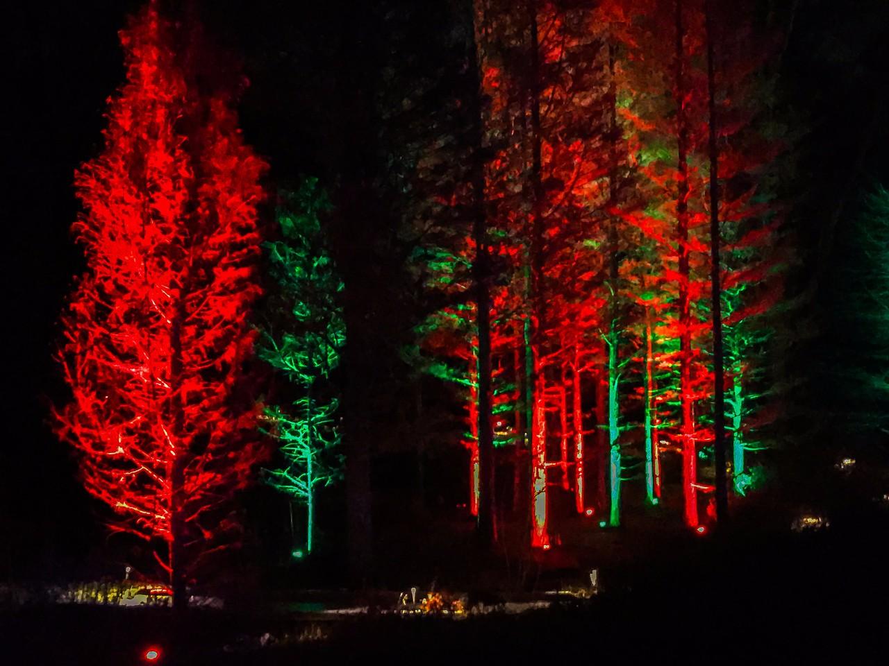 费城长木公园,夜幕下的灿烂_图1-8