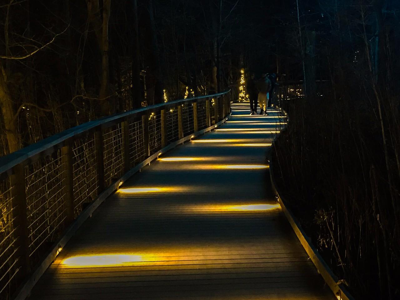 费城长木公园,夜幕下的灿烂_图1-9