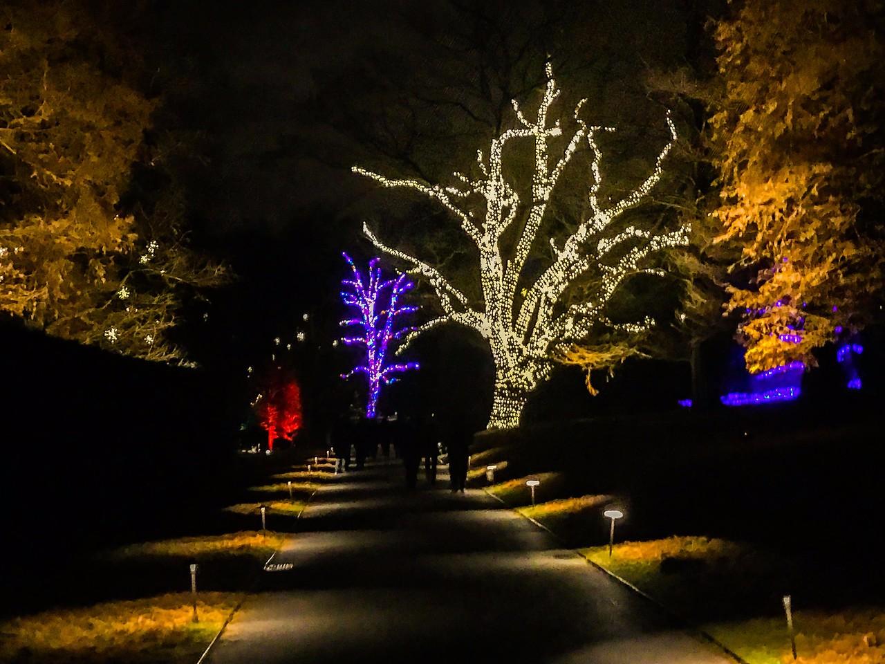费城长木公园,夜幕下的灿烂_图1-10
