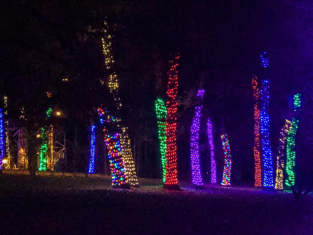 费城长木公园,夜幕下的灿烂_图1-3