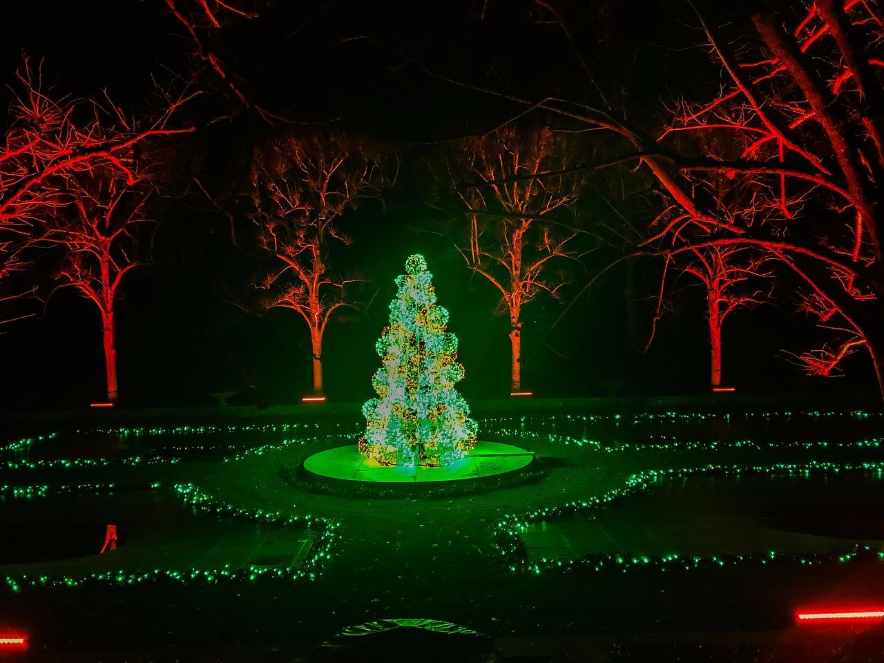 费城长木公园,夜幕下的灿烂_图1-6