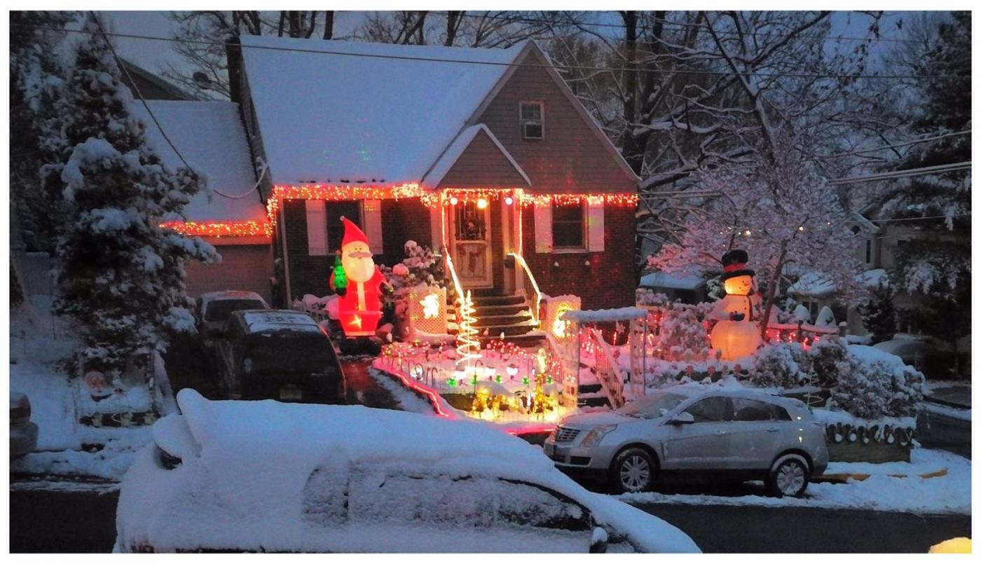 纽约地区入冬首雪景色迷人_图1-3