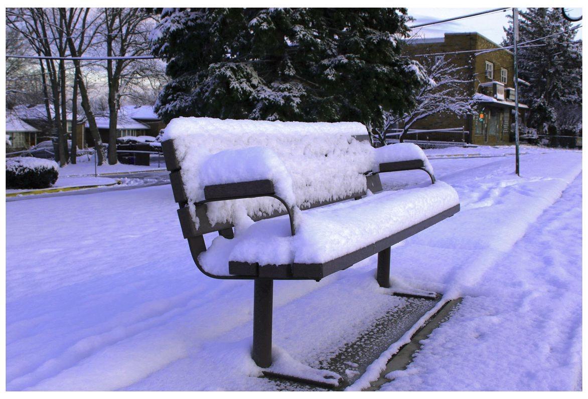 纽约地区入冬首雪景色迷人_图1-6