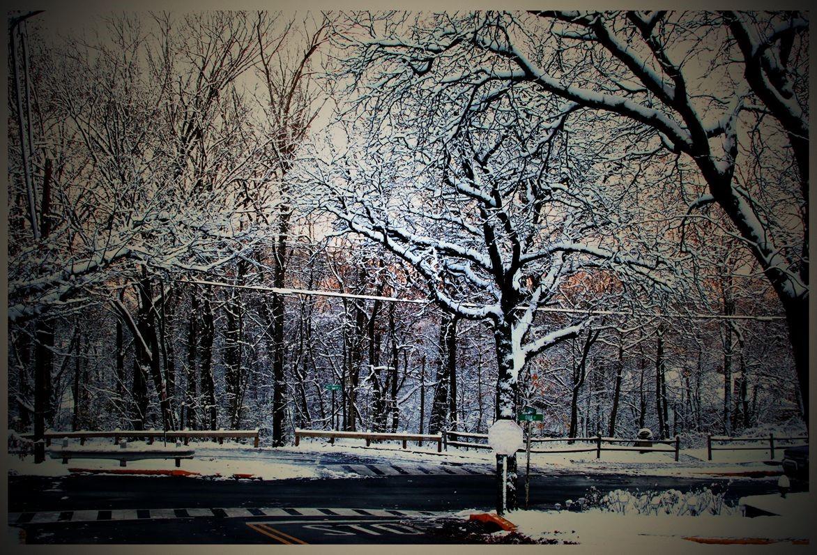纽约地区入冬首雪景色迷人_图1-13