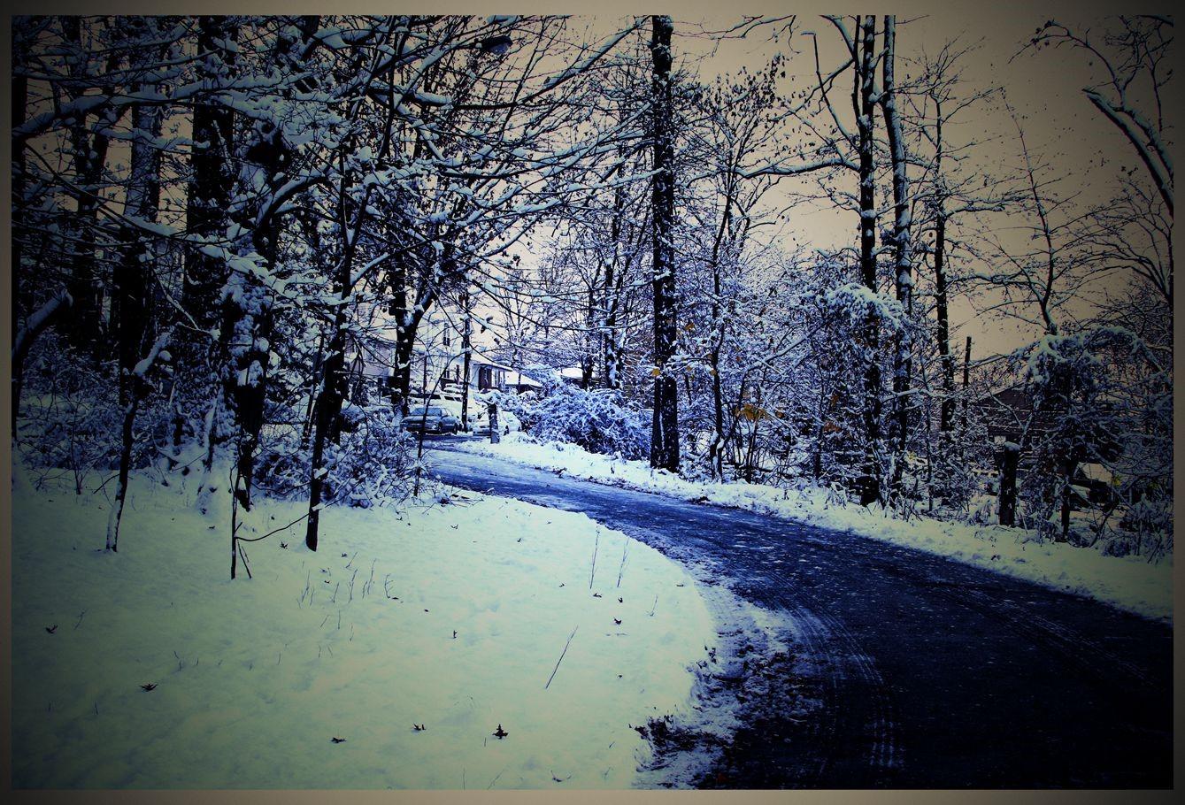 纽约地区入冬首雪景色迷人_图1-19