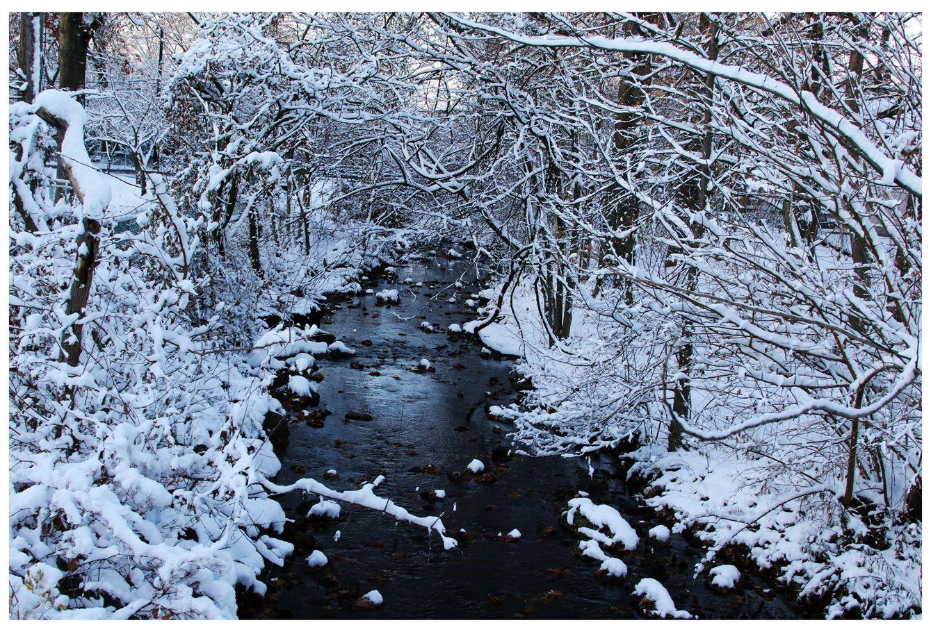纽约地区入冬首雪景色迷人_图1-20