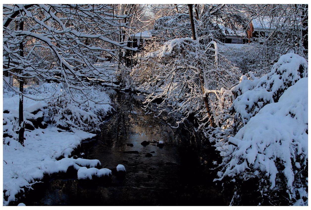 纽约地区入冬首雪景色迷人_图1-24