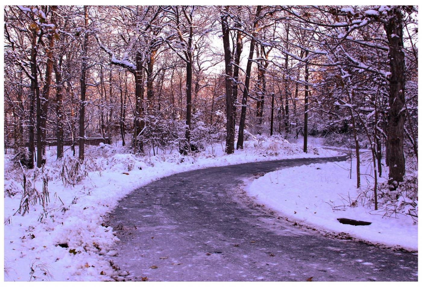 纽约地区入冬首雪景色迷人_图1-27