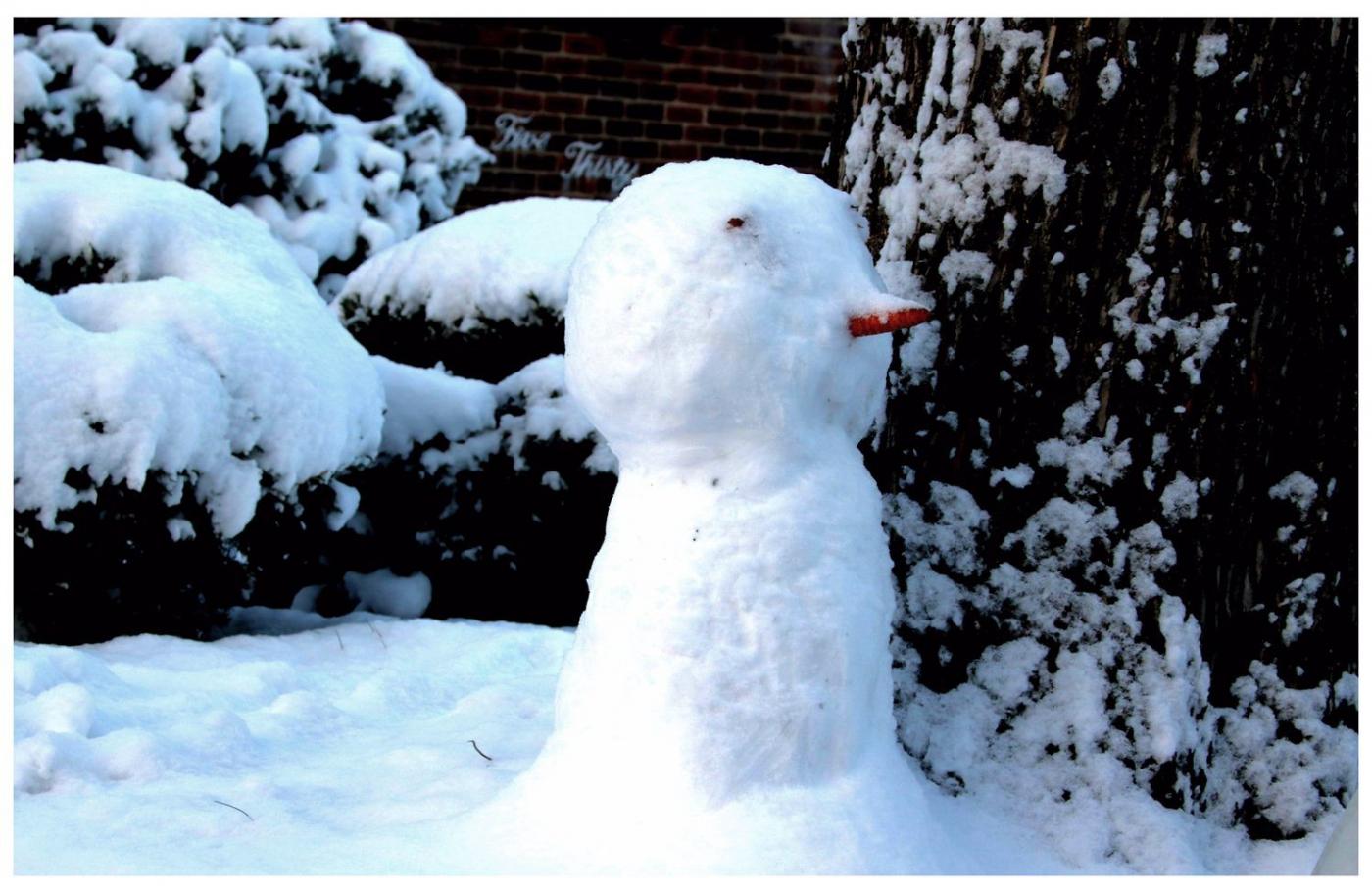 纽约地区入冬首雪景色迷人_图1-29