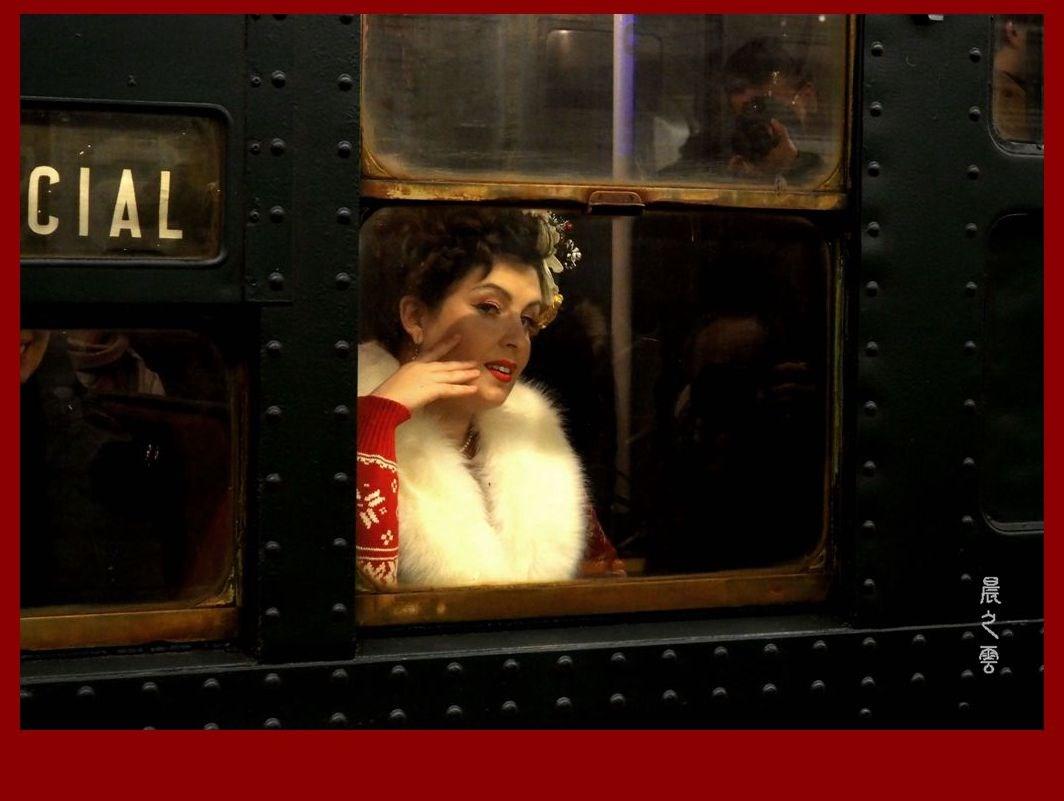 纽约假日怀旧列车(Holiday Nostalgia Train)_图1-8