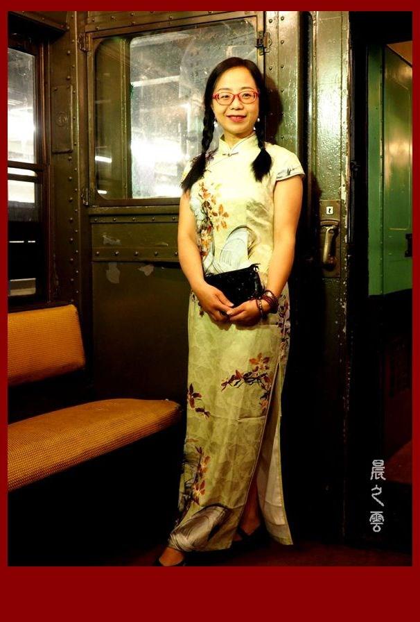 纽约假日怀旧列车(Holiday Nostalgia Train)_图1-20