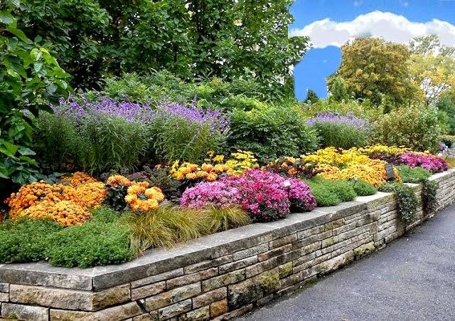 English Garden 花園_圖1-1