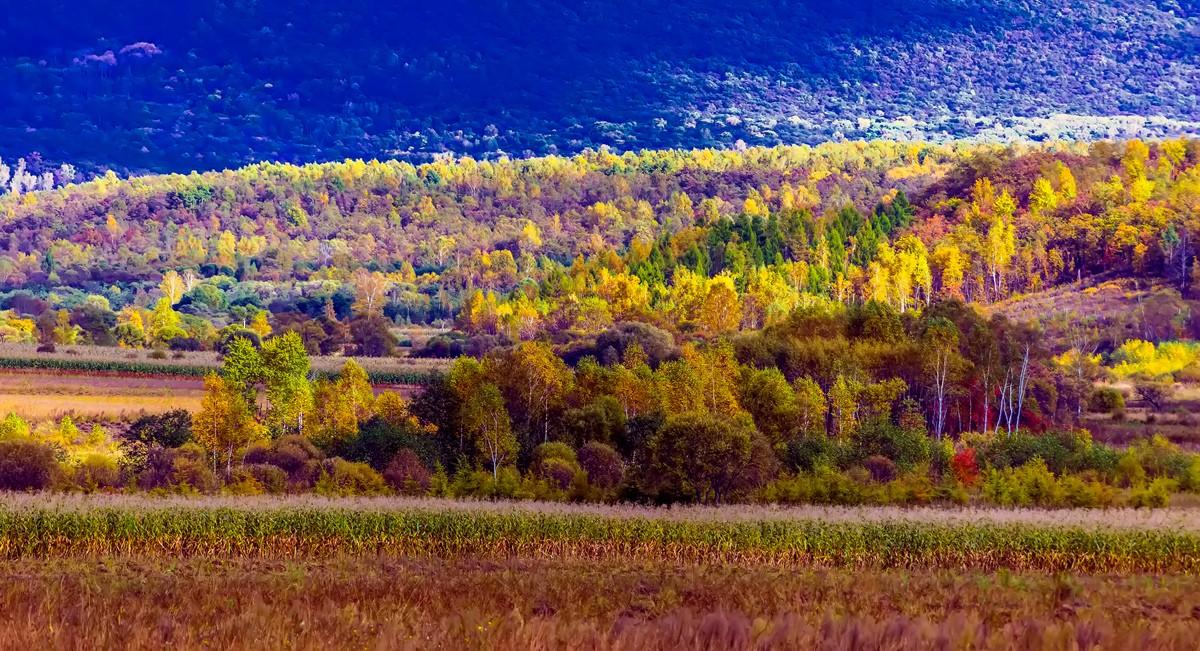 黑龙江上游有一个美丽的边陲小城 她的对面就是俄罗斯_图1-14