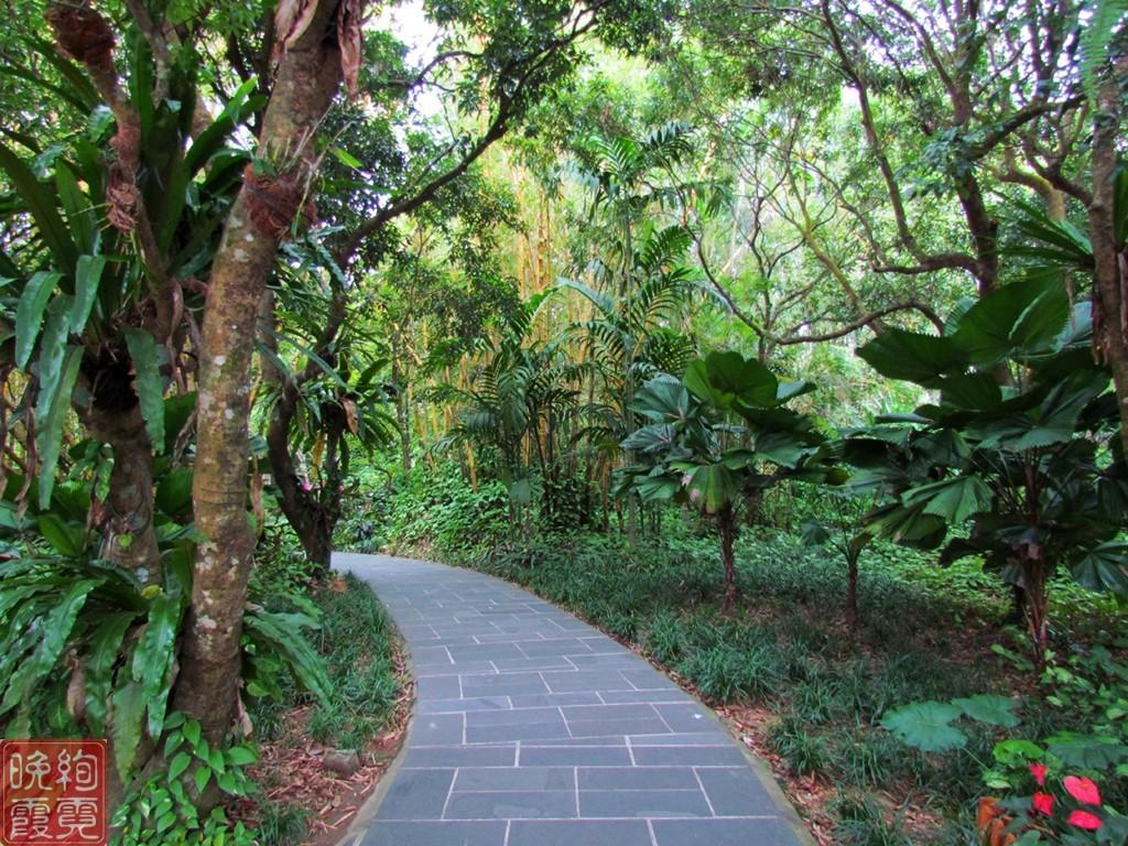 海南兴隆热带植物园_图1-2