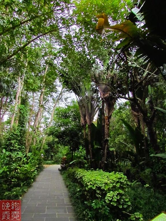 海南兴隆热带植物园_图1-3