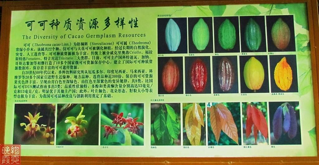 海南兴隆热带植物园_图1-7