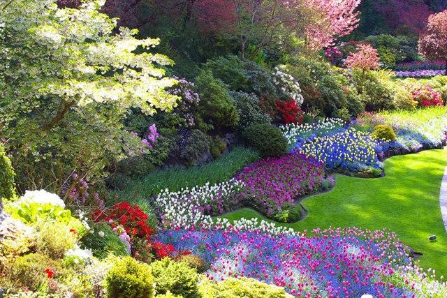 加拿大Italian Garden 花园_图1-1