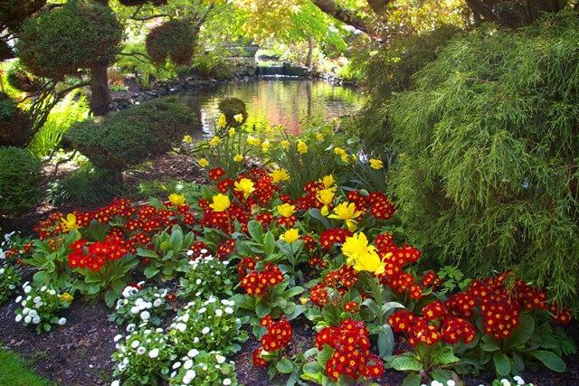 加拿大Italian Garden 花园_图1-2