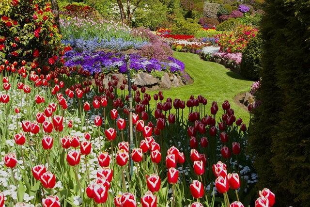 加拿大Italian Garden 花园_图1-3
