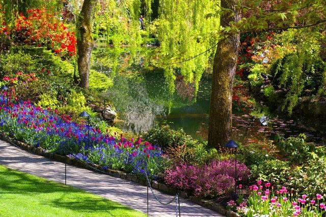 加拿大Italian Garden 花园_图1-4