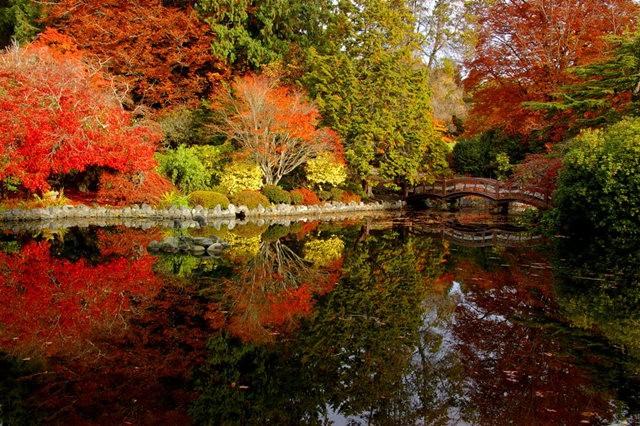 加拿大Italian Garden 花园_图1-5