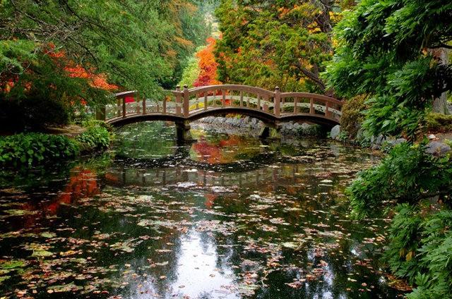 加拿大Italian Garden 花园_图1-7