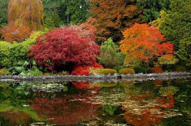加拿大Italian Garden 花园_图1-8