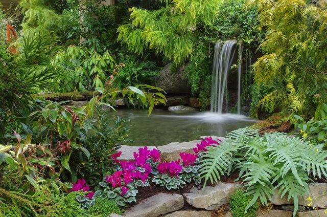 加拿大Italian Garden 花园_图1-9