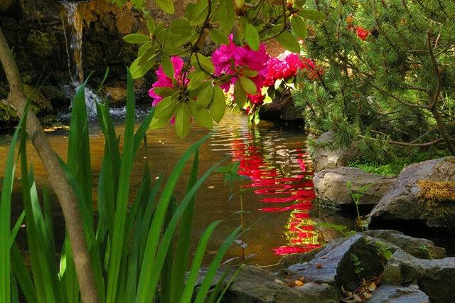 加拿大Italian Garden 花园_图1-10